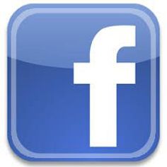 logo facebook Lemaire